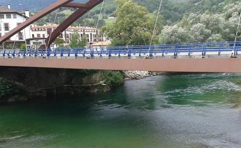 Capturas río Cares - Deva