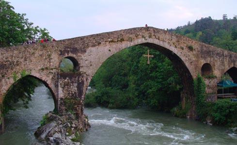 Capturas río Sella